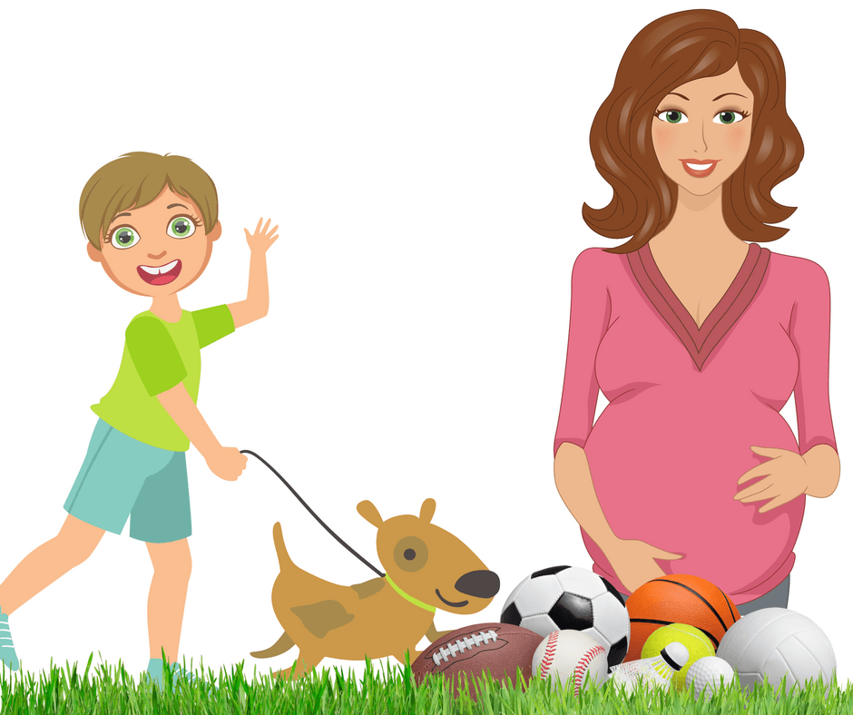 Artificial Turf For Dogs And Children