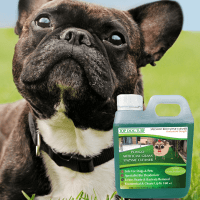 The best way to remove urine odour from artificial grass