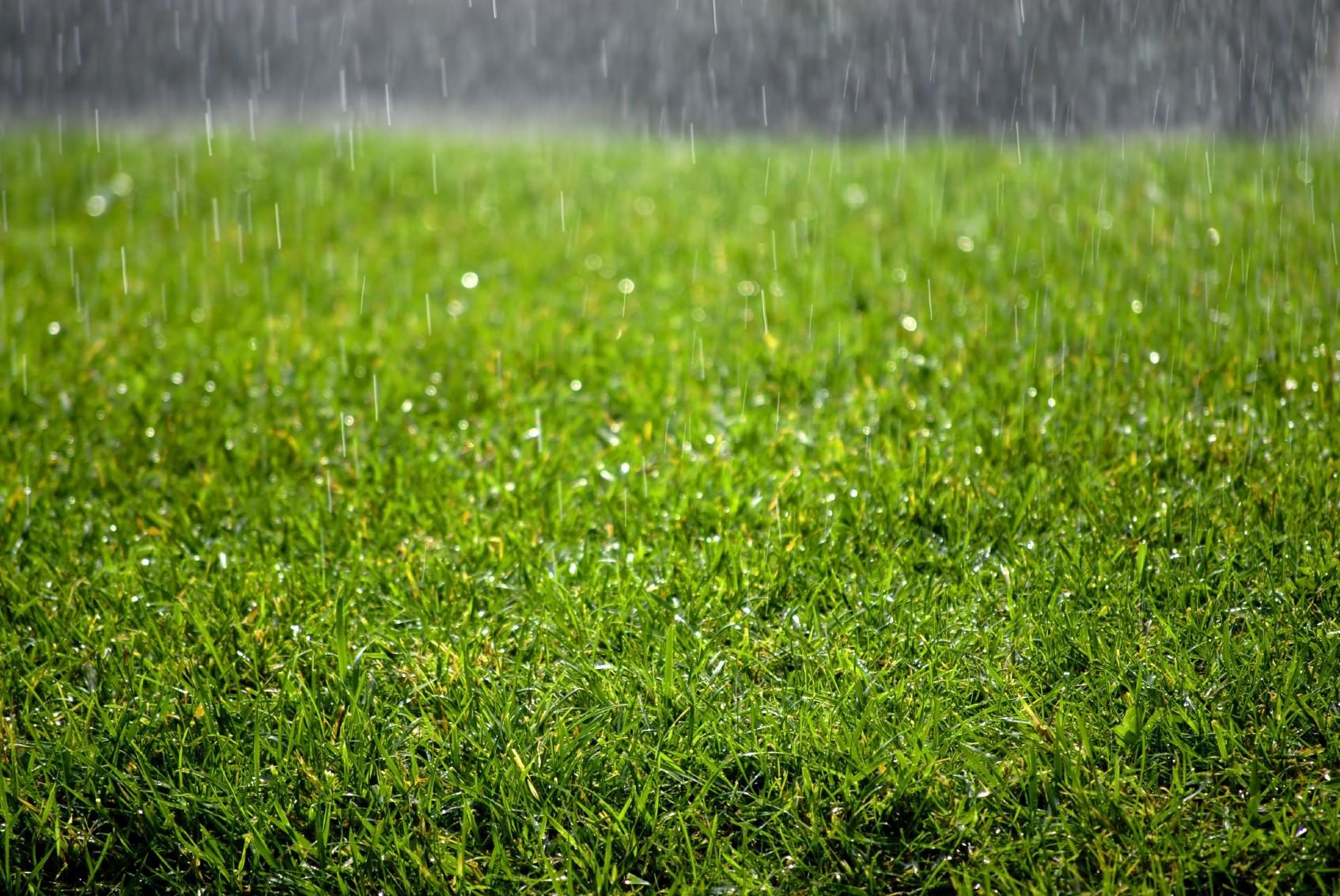 Winter cleaning your artificial grass