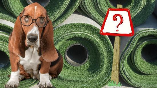 5-vital-questions