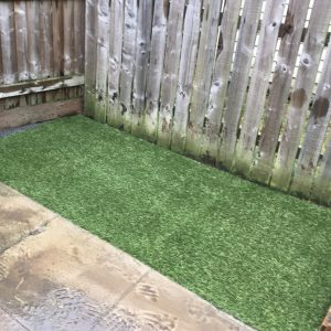 Top Dog Turf Toilet