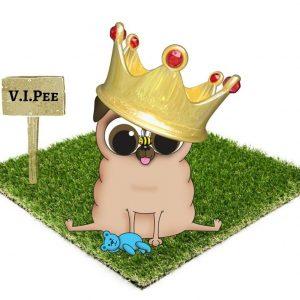 VIPee Dog loo