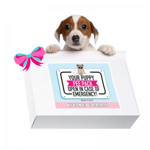 Puppy Pee Pad Box