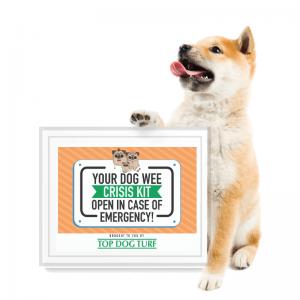 Dog Wee Crisis Kit