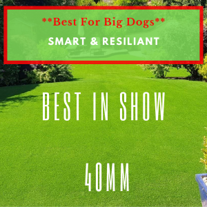 Best In Show Top Dog Turf