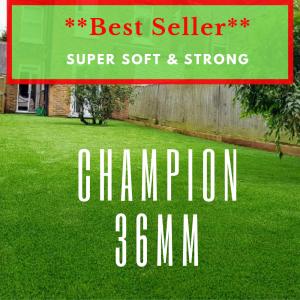 Champion 36mm TOP Dog Turf
