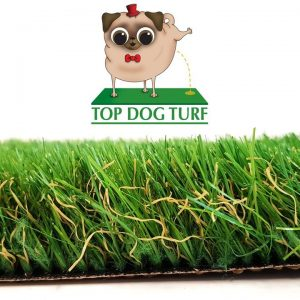 Top Dog Turf Champion Artificial Grass