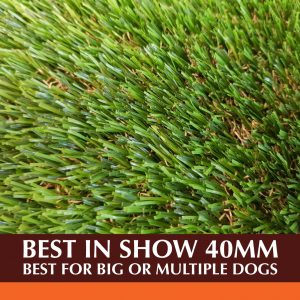 Top Dog Turf Best In Show