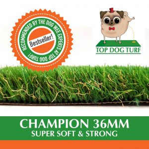 Top Dog Turf Champion