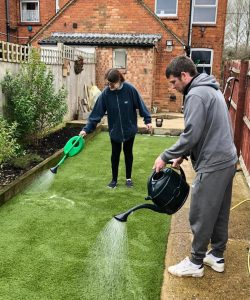 Artificial Grass Cleaning